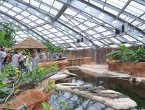 5 déc : Rencontre avec les acheteurs du CNPE // Visite de la Planète des Crocodiles